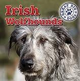 Irish Wolfhounds, Kristen Rajczak, 1433957809