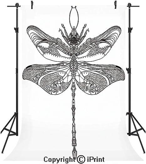 Circo Decor telones de Fondo para fotografía, círculos de Dibujo ...