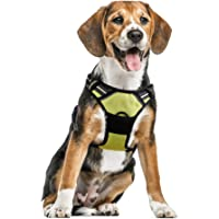 No Pull Dog Harness with Front Clip,Walking Cat Harness with 2 Metal Ring and Handle,Reflective Oxford Padded Soft Vest for SML Breed (Green,S)