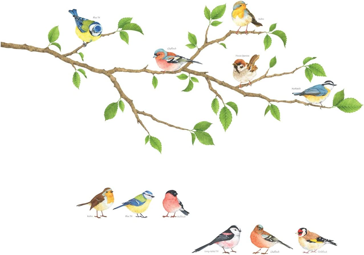 DECOWALL DS-8036 Garden Birds Kids Wall Stickers Wall Decals Peel and Stick Removable Wall Stickers for Kids Nursery Bedroom Living Room (Small)
