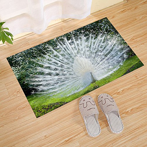 FANNEE White Peacock Opening Courtship Feather Theme Large