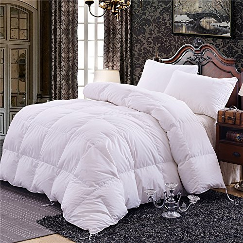 Topsleepy 75% Goose Down Comforter Queen ,100%Cotton Shell ,White (Queen 88-by-88 inches) by Topsleepy