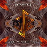Fire: Water: Ash by Ironwood