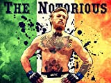 THE NOTORIOUS Conor McGregor Irish Flag MMA Ireland Painting Vintage Art 16x12 Poster Print