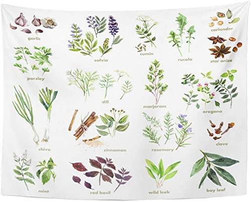 Emvency Tapestry Wall Hanging Polyester Fabric Collection of Watercolor Herb Branch Book Magazine Journal Article for Bedroom Living Bedspread Room Dorm Decorations 60×80 Inches