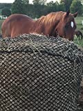 Product review for Ultimate Slow Feed Hay Net
