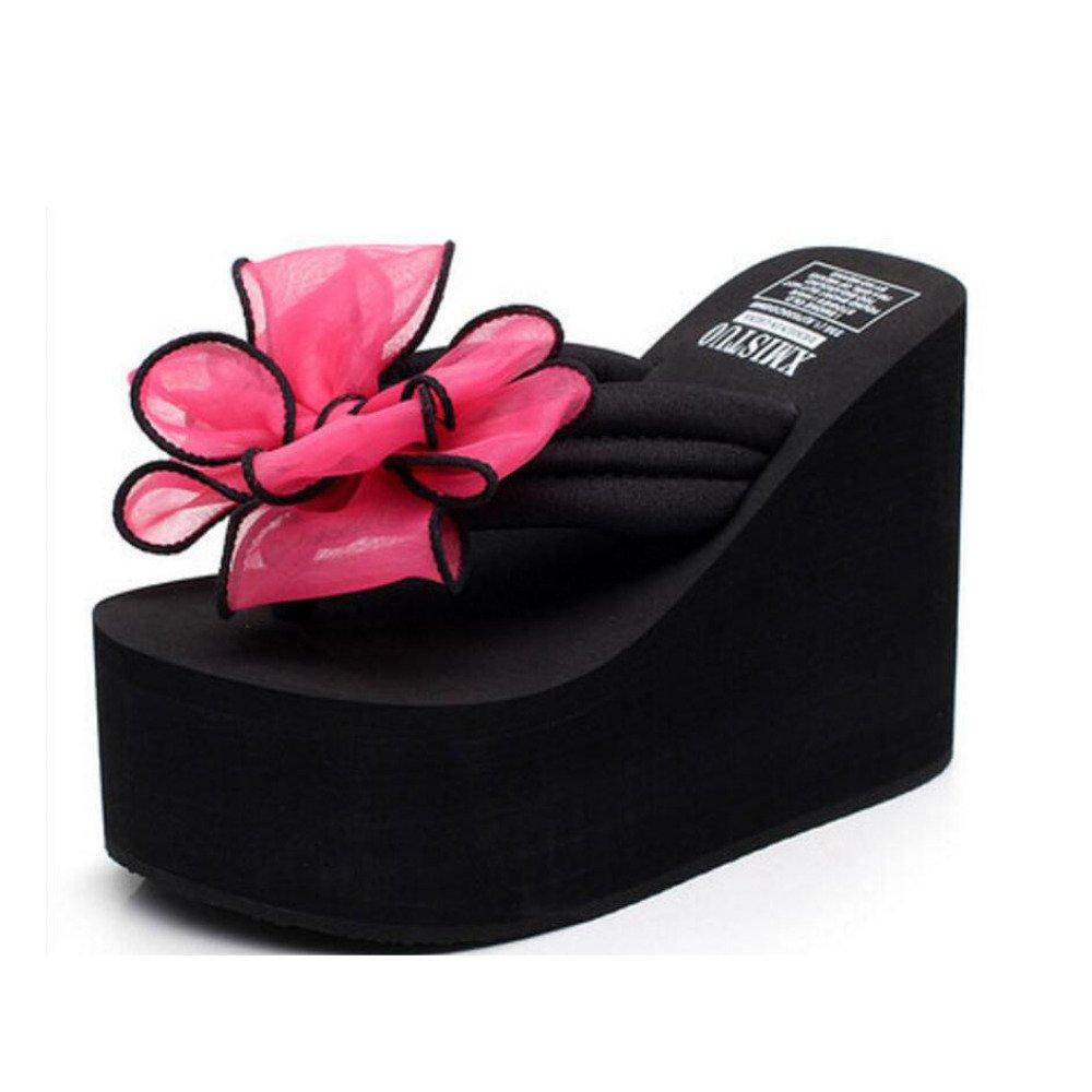 Tongs B00IJNL1GC à Talons Hauts Cm Chaussures Antidérapantes 19975 pour Femmes Chaussures de Plage épaisses Compensées Sandales Pantoufles Chaussures Décontractées Talon DE 12 Cm Red edcc04a - deadsea.space