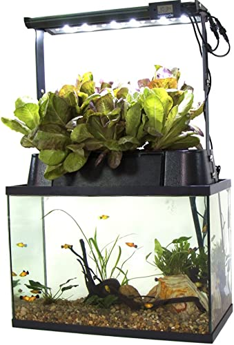 ECO-Cycle Aquaponics Indoor Garden System