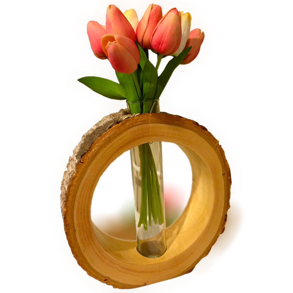 roro RRoVasRnd4 Hand-Crafted Hollowed Tree Trunk Slice Circular Halo Vase