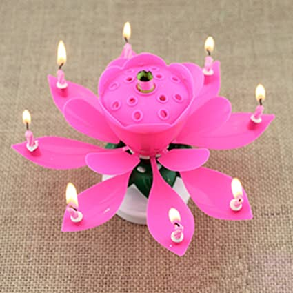 Chunshop Rotary Happy Birthday Music Candle Novelty Blooming Lotus Flower Party Lighting Decoration Pink 1 Amazonca Home Kitchen