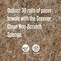 Scotch-Brite Greener Clean Sponge - long lasting