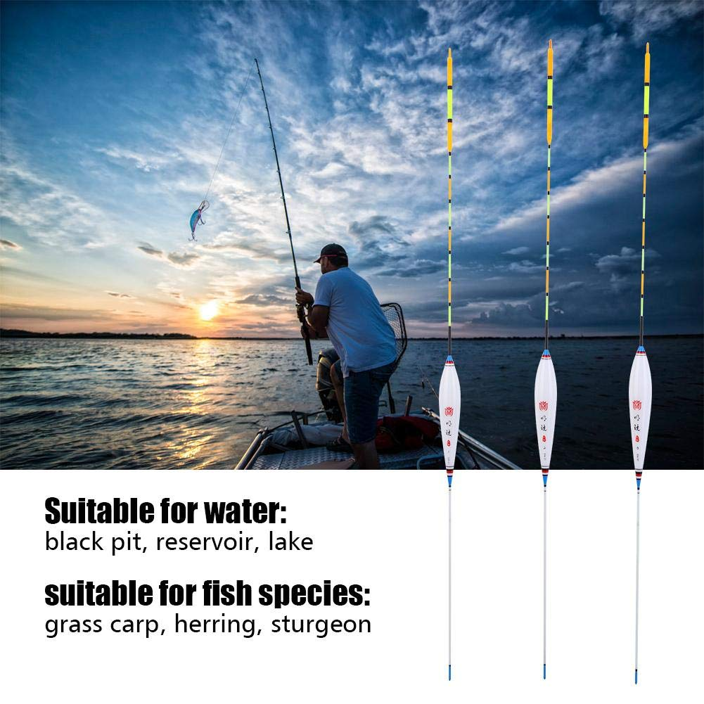 VGEBY1 Flotadores de Pesca, Nano Aparejos de Pesca Tapón Bobbers Conjunto de Flotador de Pesca Accesorios Herramientas(DW-01): Amazon.es: Deportes y aire ...