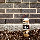 Spectracide Terminate Termite Killing