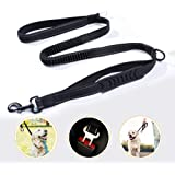 Rabbitgoo Dog Leash Car Seat Belt Leash Heavy Duty Pet Leash Double Handle Safety Lead Reflective Straps for Dogs Anti-Pull Elastic Bungee Buffer Dog Safety Leash Easy Control for Outdoor Activities
