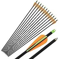 "33"" Fibreglass Arrows Archery Field Tip Target Arrows for Recurve/Compound Bow"