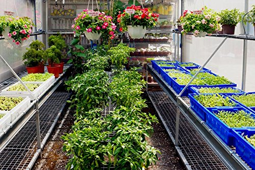 Suncover Greenhouse Plastic Film Clear Polyethylene 6 mil 4 Year UV Resistant Cover (15 ft Wide x 25 ft Long) by Suncover (Image #3)