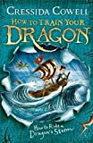 How to Ride a Dragon's Storm: Book 7 (How To Train Your Dragon, Band 21)