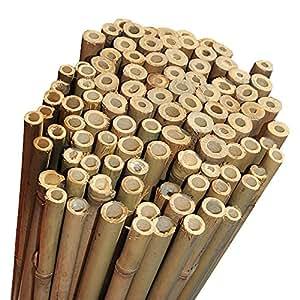 Elixir 91,44 cm ultrafuertes bigdug planta de bambú bastones de apoyo profesional fults 150 x
