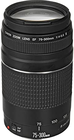 WhoIsCamera SL2 product image 4