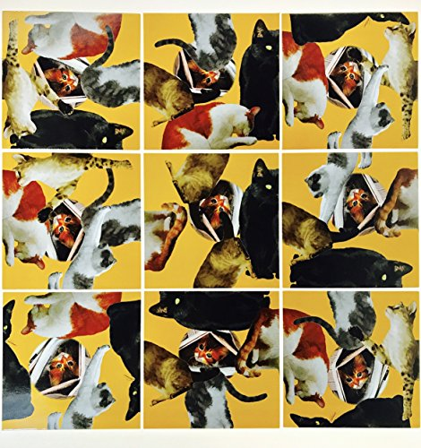Square Nine (Scramble Squares Cat 9 Piece Challenging Puzzle - Ultimate Brain Teaser and Mind Game for Young and Senior Alike - Engaging and Creative With Beautiful Artwork - By B.Dazzle)
