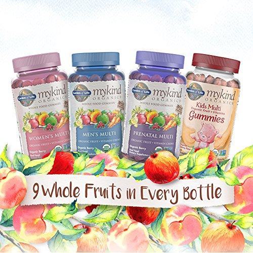 Garden Of Life Mykind Organics Prenatal Gummy Multi Berry 120 Organic Fruit Chews Buy