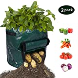 Albabara Plant Grow Bags 7 Gallon Potato Garden DIY Patios Vegetables Durable Planter Bag with Flap Handles and Heavy Duty for Harvest Rising Tomato, Carrot, Taro and Onions, Atrovirens 2 Pack
