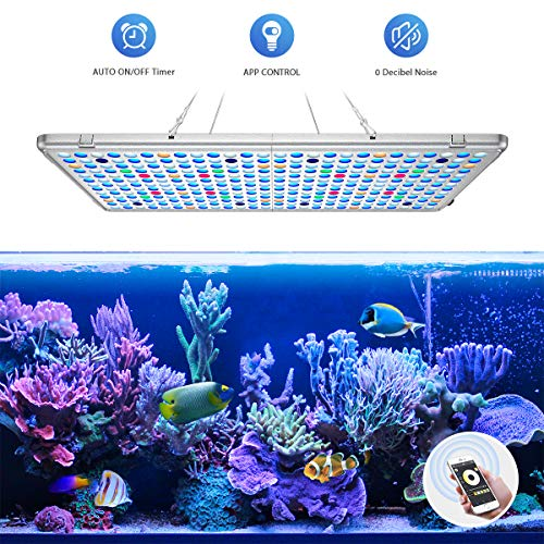 (Bozily Aquarium Light 300W, APP Control LED Coral Light with Automatic on/Off Timer and Dimming Function, Full Spectrum Reef Lighting Light for Coral Reef Grow Fish)