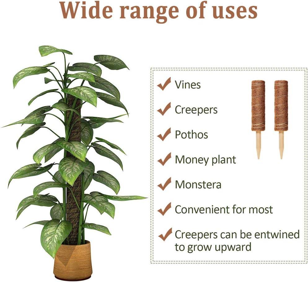 WELLXUNK T/ótem de Fibra,2 Piezas Palo de Musgo Soporte para Extensiones de Plantas Musgo de Coco,para Enredaderas Soporte de Plantas Extensi/ón Escalada Plantas de Interior,con 12 Etiqueta