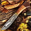 Hunting Knife - Decorative Knife Fixed Blade - Large Fishing Long Knifes with Sheath - Best 440c Stainless Steel Classic Big Sharp Fix Blades Hunting Knife with Wood Handle - Grand Way FB 1818