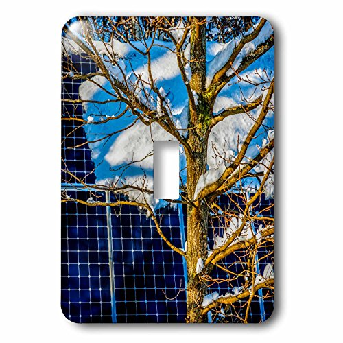 3dRose Alexis Photography - Objects - Young oak tree and a snow covered solar power panel in winter park - Light Switch Covers - single toggle switch (lsp_280888_1) by 3dRose