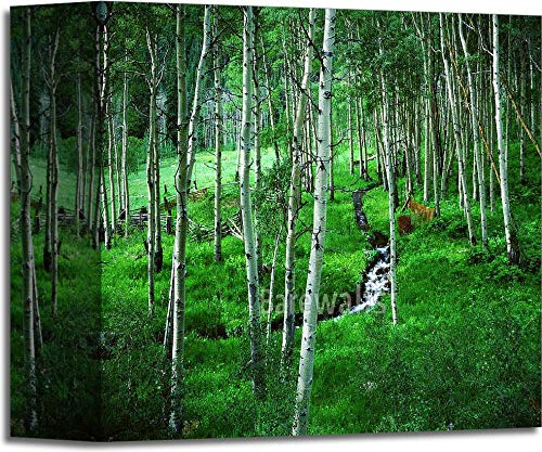 (Aspen Grove and Ranch, Maroon Bells Wilderness Area, Colorado Gallery Wrapped Canvas Art (6in. x 6in.))