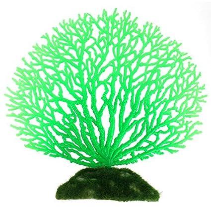 Amazon.com : eDealMax Planta de goma peces de acuario tanque de agua artificiales Coral decoración Verde : Pet Supplies