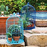 Decorative Blue Metal Blooms Birdcages
