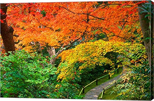 Rob Okochi Sanso Kyoto Japan - Okochi Sanso, Kyoto, Japan by Rob Tilley/Danita Delimont Canvas Art Wall Picture, Gallery Wrap, 22 x 14 inches