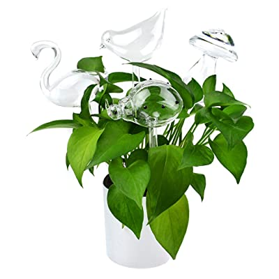 Star Shape Plant Waterer Self Watering Globes Clear Automatic Self Watering
