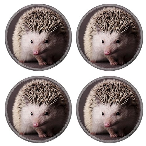 Hedgehog Round Coasters