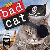Bad Cat Mini Wall Calendar 2016