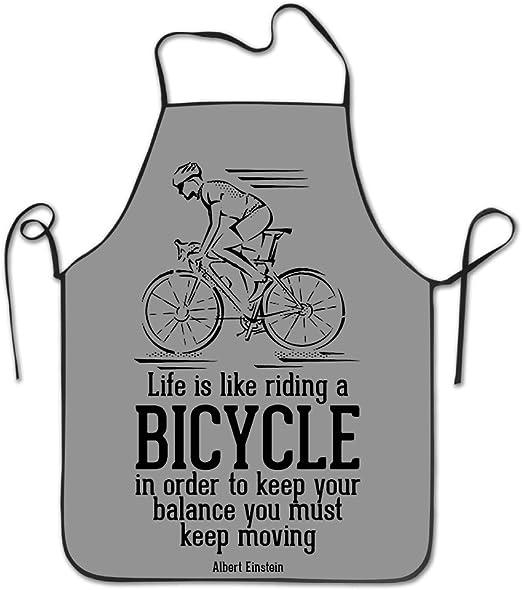 Vida es como montar en bicicleta – delantal cocina delantal, Lock ...