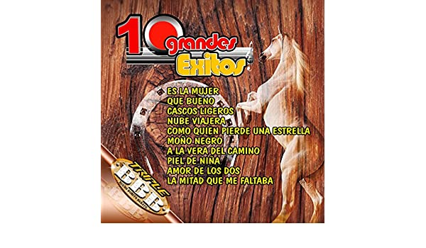 10 Exitos De Alejandro Fernandez by Mariachi Juvenil de Mexico on Amazon Music - Amazon.com