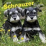 Schnauzer Puppies Wall Calendar Dogs Pups 2018 BEST VALUE {jg} Best Holiday Gift Ideas - Great for mom, dad, sister, brother, grandparents, grandchildren, grandma, gay, lgbtq.