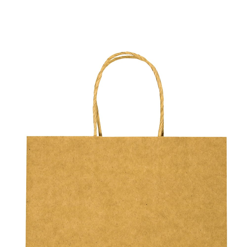 Bagmad Thicker Paper 50 Count 10x5x13, Large Kraft Paper Shopping Bags with Handles,Gift Natural Party Retail Craft Brown Bags,50PCS by Bagmad (Image #3)