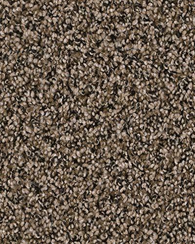 Koeckritz 8'x10' Indoor Frieze Shag Area Rug - Black and Tan II 40 oz - plush textured carpet with Premium BOUND Polyester Edges.