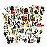 45PCS Cute Cactus and Succulent Plants Stickers, Cute Scrapbook Planner Album Laptop Journal DIY Craft Decorative