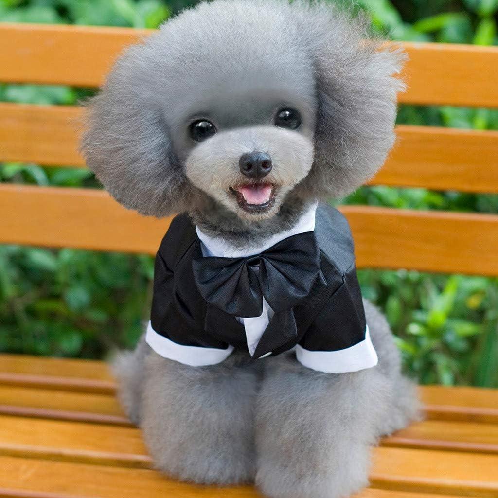 Black,L BaojunHT Pet Dogs Gentleman Best Man Tuxedo Suit for Wedding Formal Dress Costume