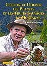 Cueillir et utiliser les plantes et les fruits sauvages de montagne par Hiobergary
