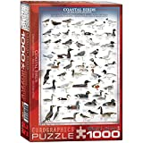 EuroGraphics Coastal Birds Puzzle (1000-Piece)