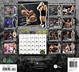 2012 WWE Superstars Wall Calendar