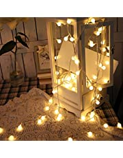 LED Fairy Globe String Lights, 20 Feet 40 LEDs Battery Operated Waterproof LEDs Fairy Lights for Home Party Birthday Garden Festival Wedding Indoor Outdoor Use(Warm White)