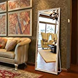 Full Length Floor Mirror with Standing Holder, Dressing Standing Mirror for Bedroom 65''x21.7'' (Champagne)