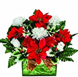 Red Poinsettia with White Mums and Holly Sale